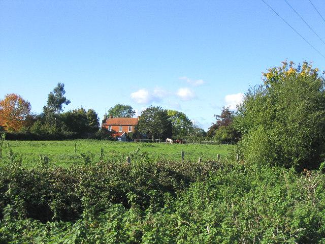 Town Pasture, Blackmore, Essex