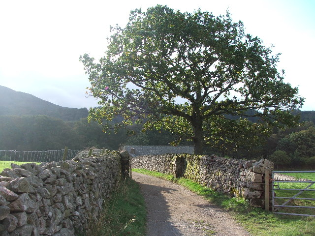 Farm track near Boot, Eskdale