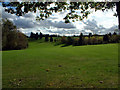 TQ4358 : Cherry Lodge golf course, TN16 by Philip Talmage