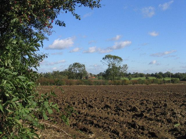 Ploughed Field, Rookery Farm, near  Norton Heath