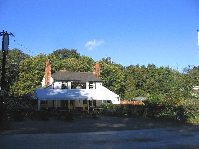 The Viper Public House, Mill Green, Essex