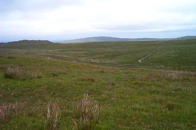 Moor landscape - Dartmoor