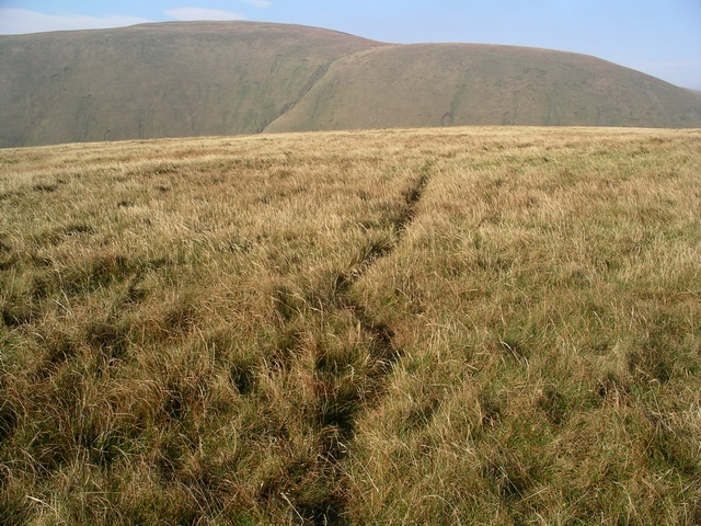 Sheep track, Swatte Fell