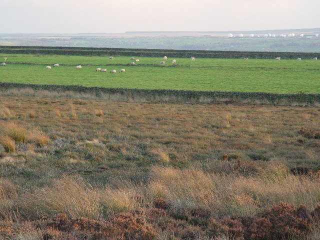Moorland and Fields
