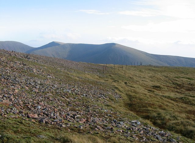 Fence posts, Meall na h-Eilde.