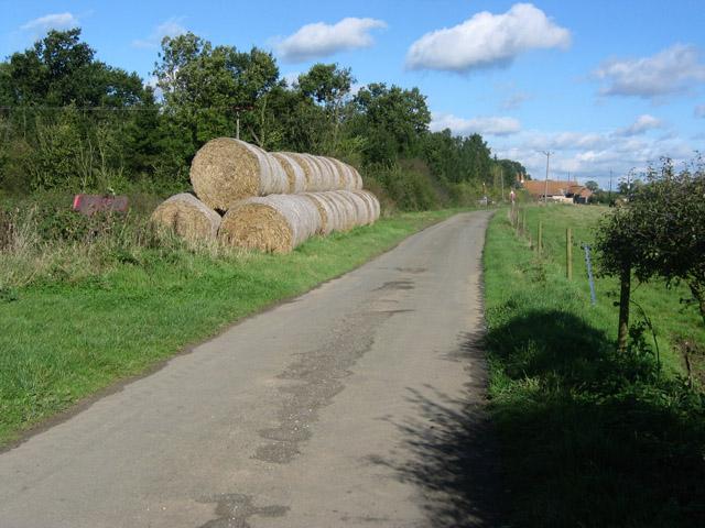 Woodfold Lane, near Waltham on the Wolds