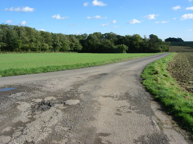 Woodfold Lane, near Waltham on the Wolds