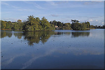 TR0147 : View east across Eastwell Park Lake by Guy Erwood