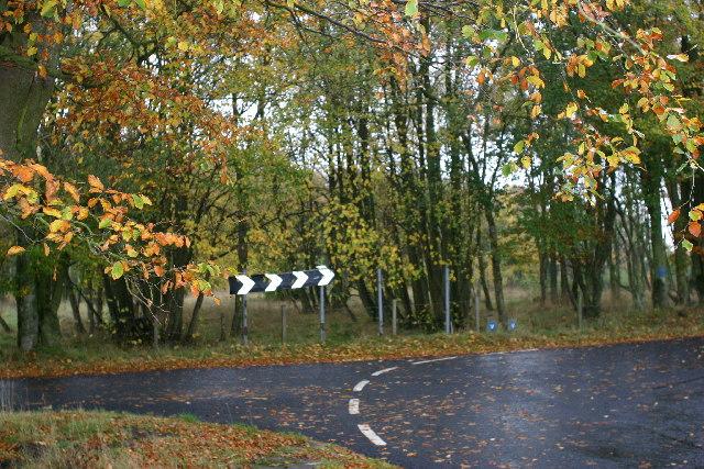 Sharp bend, nice trees, raining