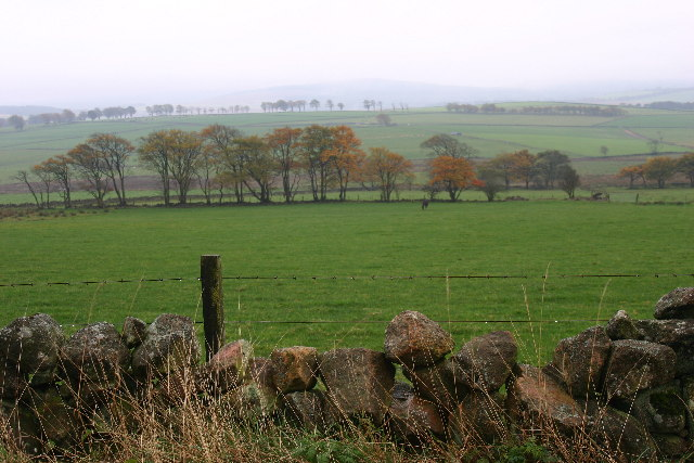 Farmland near Lupus