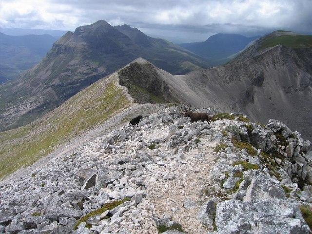 Ben Eighe's Ridge