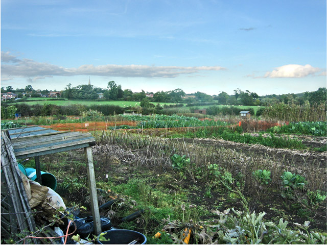 Allotments, Welby Lane near Ab Kettleby, Leicestershire