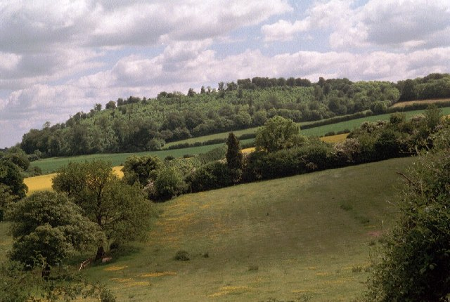 Noar Hill from the Hangers' Way path on the south side of Selborne Hill