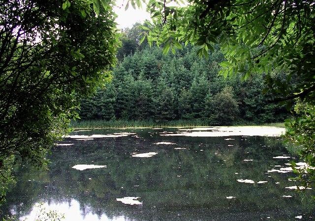 Pond, Duns Castle Grounds