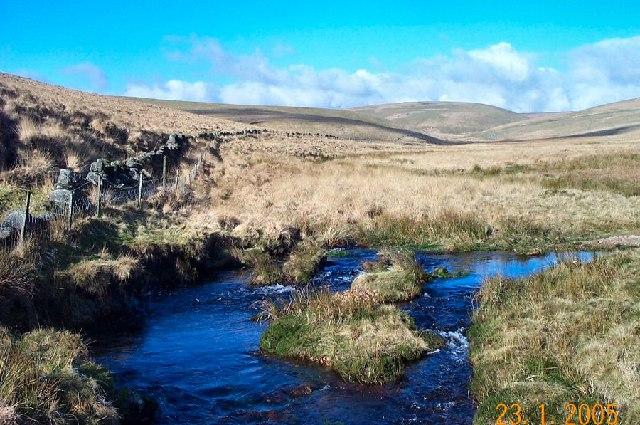 Cowsic valley - Dartmoor