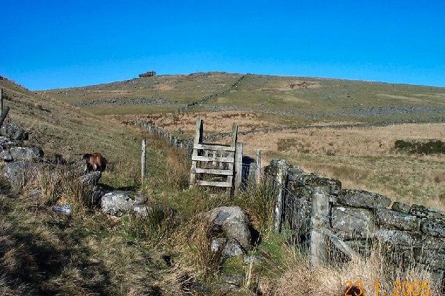 Foxholes - Dartmoor