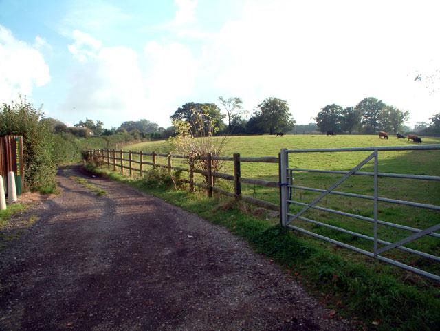 Track to Brickyard Farm, off Jail Lane, Biggin Hill TN16