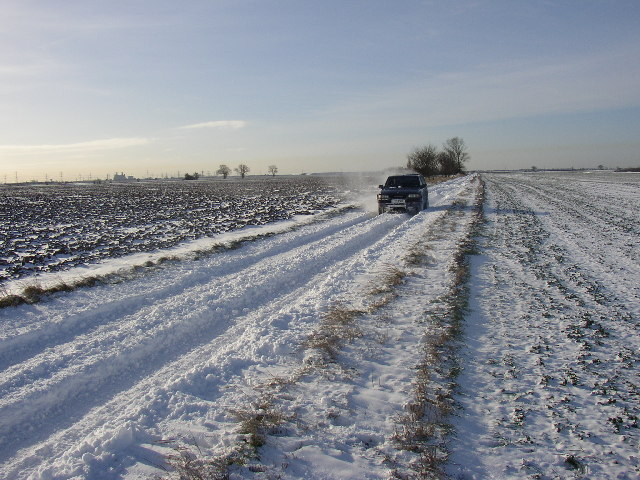 Ox Pasture in the winter