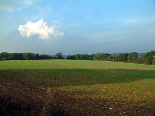 Countryside west of Biggin Hill, TN16