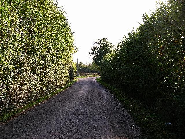 Coltstaple Lane, near Southwater