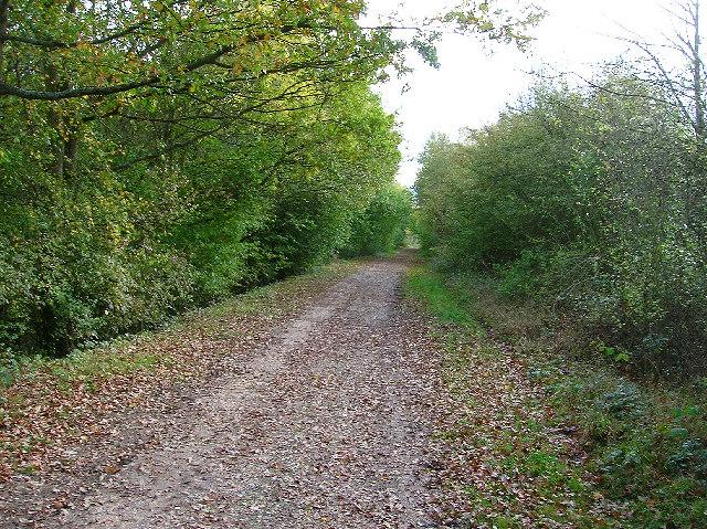 Downs Link, between Copsale and West Grinstead