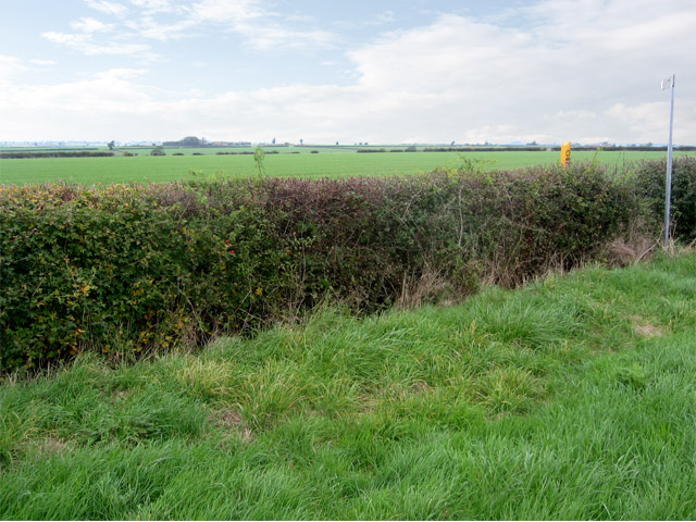Farmland  between Coston and Wymondham