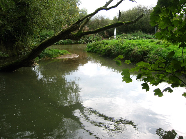 River Eye, Coston Leicestershire