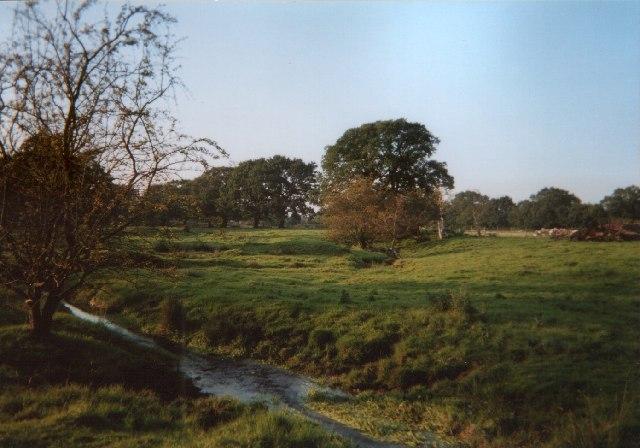 Skellorn Green, near Poynton