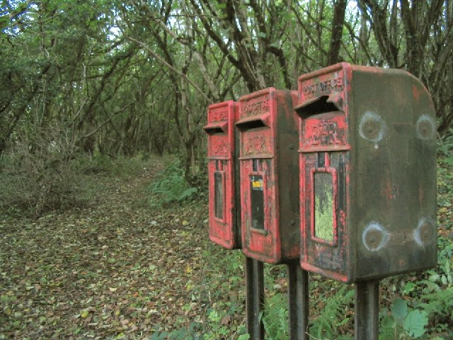 Old Forest Postboxes