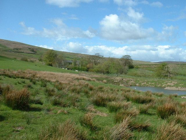 New pond, Burn Side Farm
