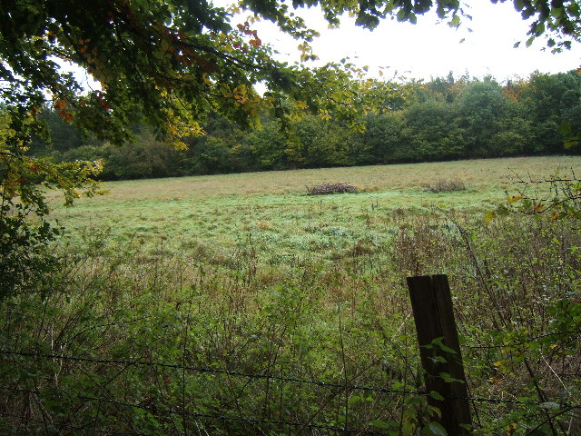 Field next to Bridleway leading to Rowbarns Manor