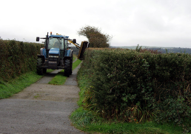 Hedging near Chacewater