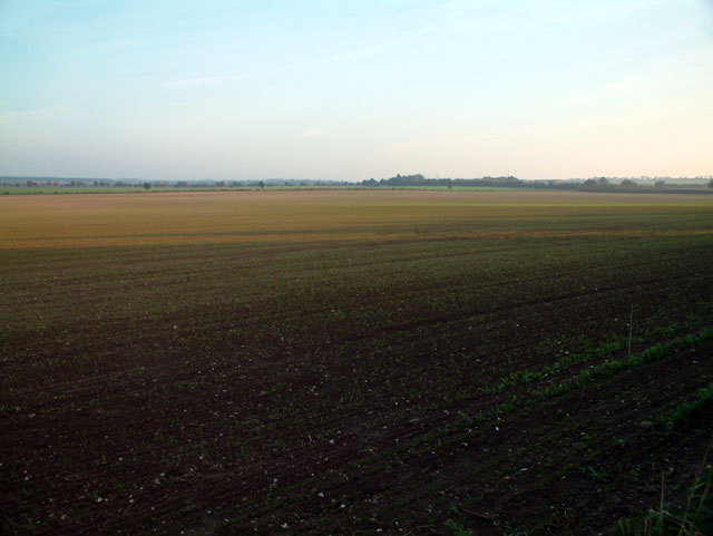 Farmland south of Fulbourn