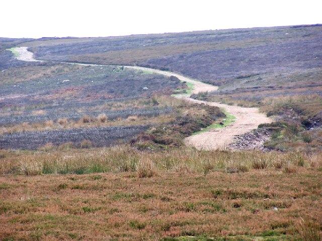 Marrick Moor