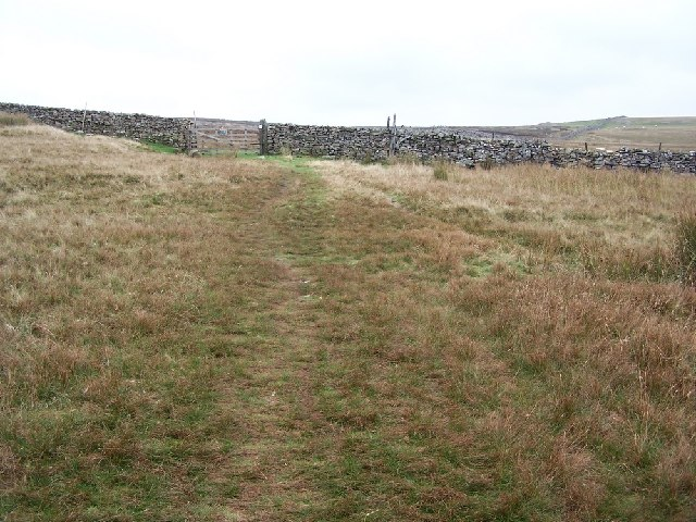 Track from Langthwaite to Hurst