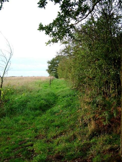 Footpath off Baker's Lane