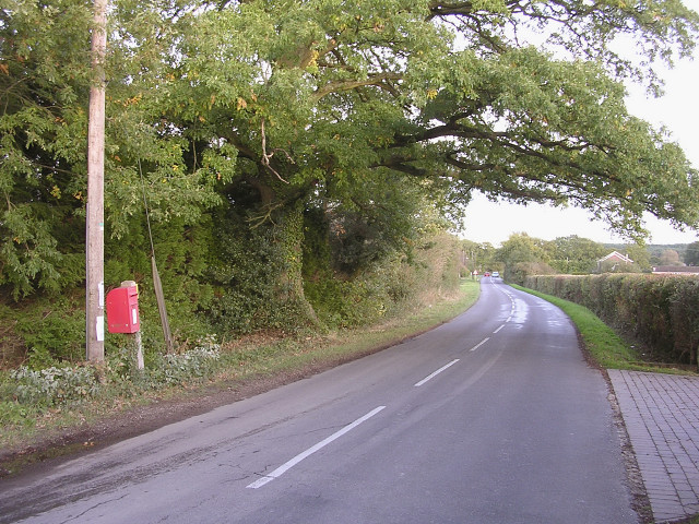 Postbox on the Beaulieu Road, west of Hanger Corner
