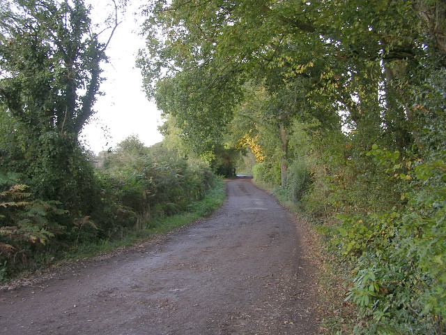 Carter's Lane leading to Birchlands Farm, off Beaulieu Road