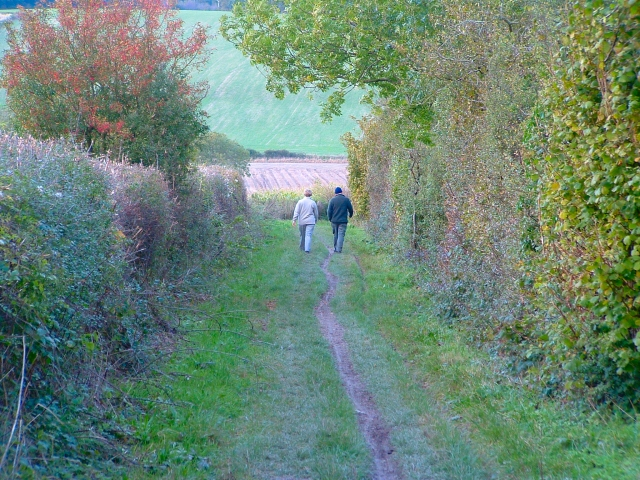 South Downs Way, East Meon, Hampshire
