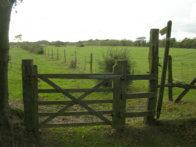 Bridleway to Dilton Farm from Beaulieu Heath, New Forest