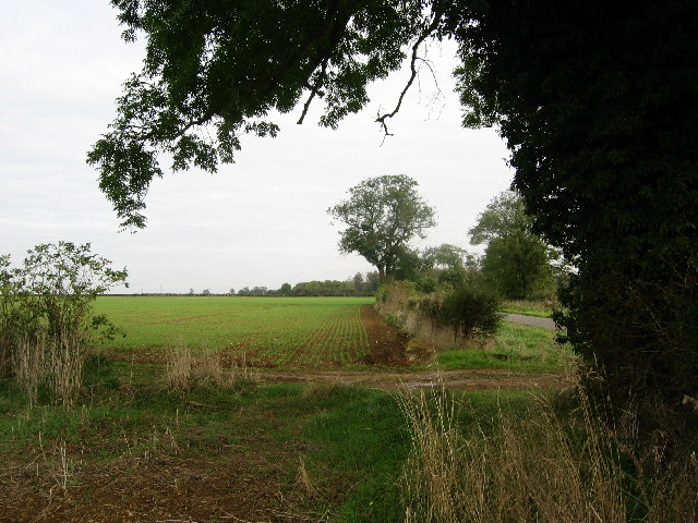 Farmland  off Gorse Lane, near Croxton Kerrial