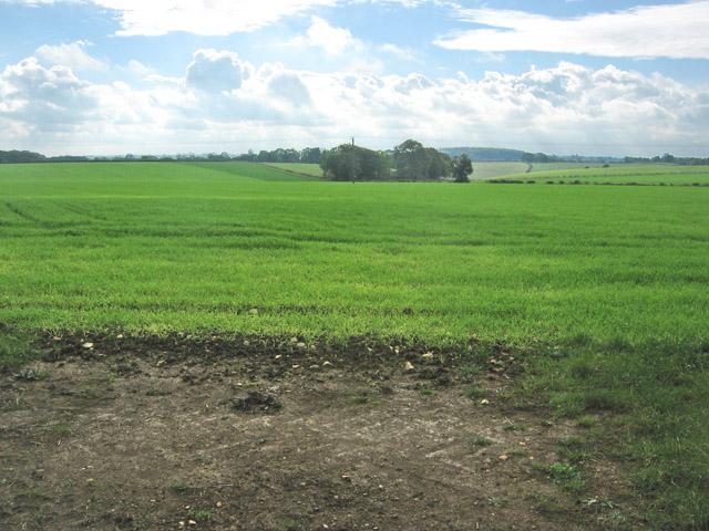 Farmland near Great Ponton