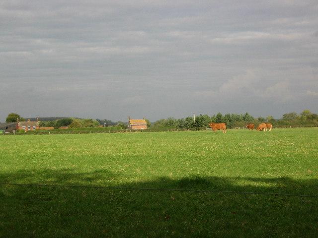 Farmland, Saltby Airfield