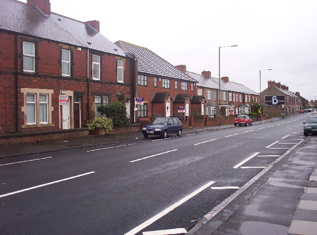Houses in Palmersville