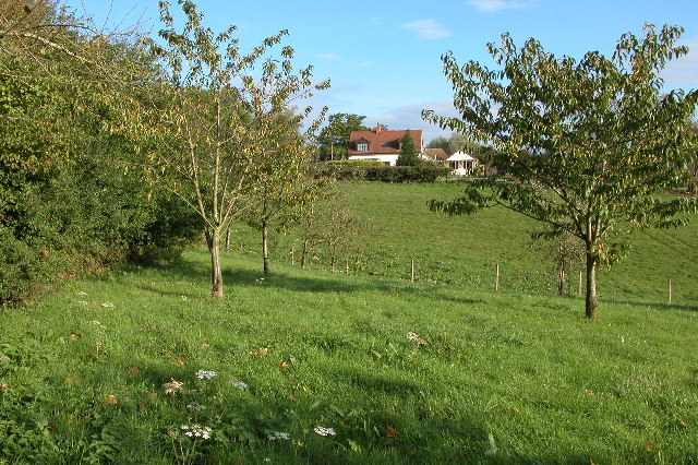 Herridge's Orchards