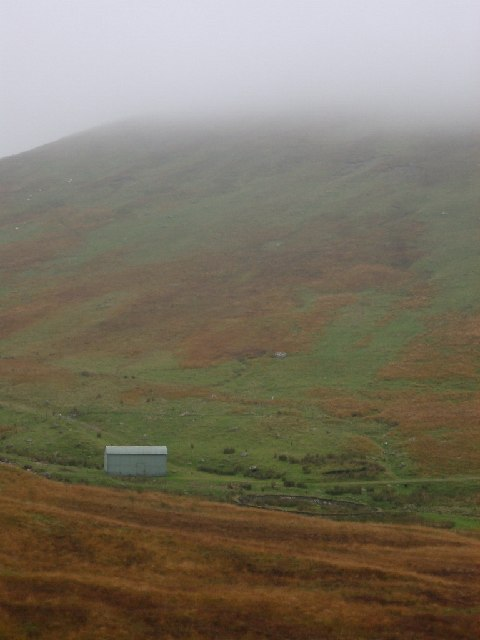 Shed and sheepfank near Molls Cleugh