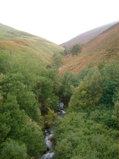 up the Linghope Burn from Meggat