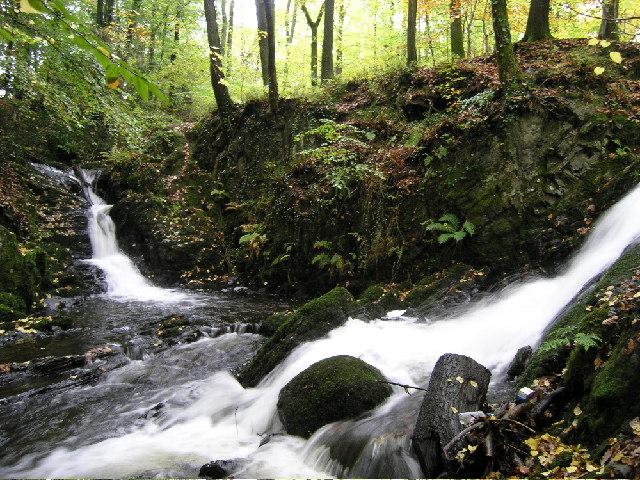Waterfall in Sherriffs Walk - Windermere