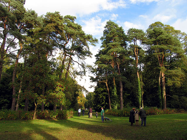 In the vicinity of Down Plantation: Westonbirt