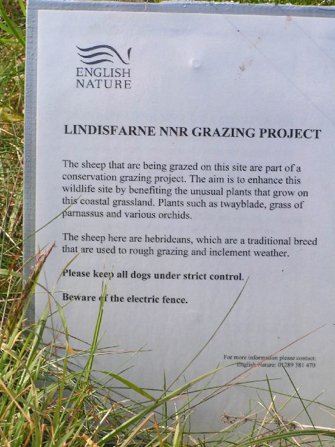 Lindisfarne Grazing Project